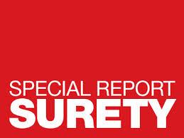 Surety One (surety news)