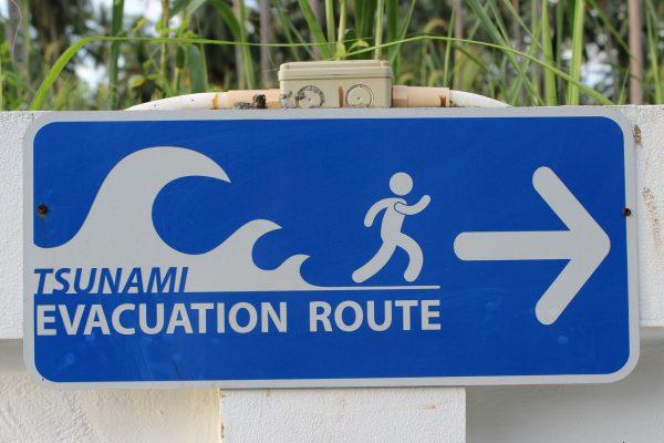 Hawaii public adjuster bond, hawaii public adjuster surety bond, hawaii public adjuster, Hawaii, hawaii surety bond, public adjuster bond, public adjuster surety bond, Surety One;